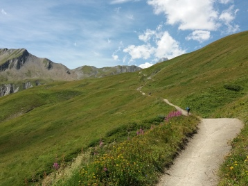 en remontant le Val Ferret suisse