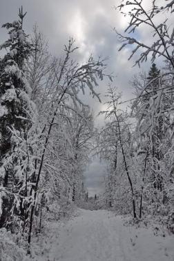 Parc du Mont Valin